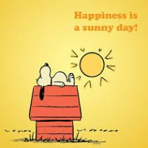 snoopy-happiness-is-sunnyday