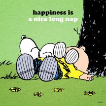 snoopy-happiness-isnap